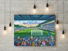 adams park canvas a3 size